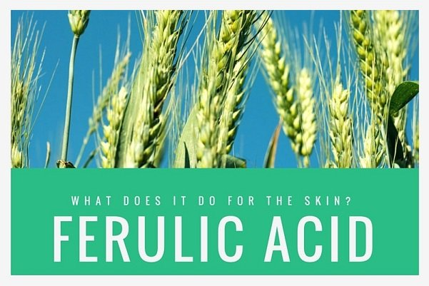 skin care benefits of Ferulic Acid - Anti aging products